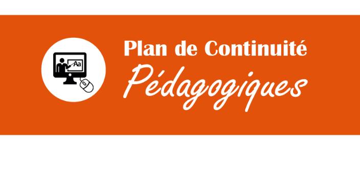 plan_continuite_pedago.PNG